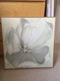Lotus Flower Canvas Print Picture