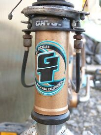 Vintage BMX GT with rear pegs