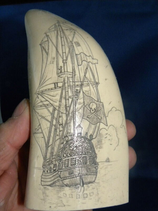 "Scrimshaw reproduction sperm  whale tooth ""PIRATE SHIP"" 7 inches long perfect"