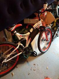 Ladies Boss Mountain Bike