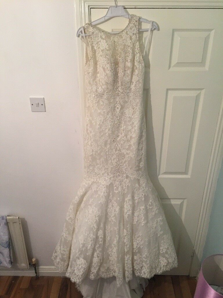 Never worn before wedding dress and vail