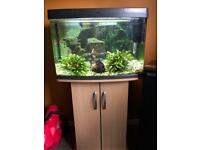 Fish tank 65l with stand