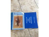 Principles of Anatomy and Physiology Tortola Grabowski 9th Edition