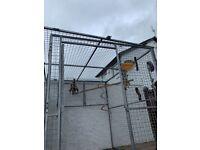 Heavy Duty Fence enclosure aviary kennel panels