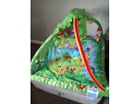 Like new Fisher Price jungle gym play mat