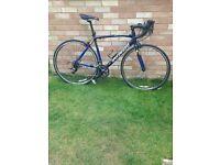 Specialized Allez Sport Road Bike 54cm