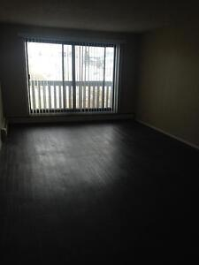 Ground Floor Suite with Fenced Yard! Pet Friendly!