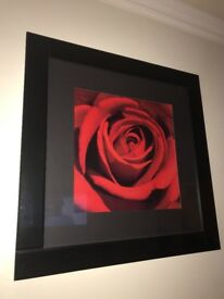 Large red rose picture and frame and 2 x 3D red flower wall art