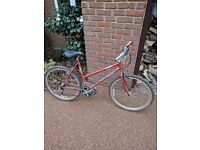 Ladies 26 inch wheel Ridgeback Hybrid bike