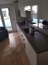 PROFESSIONAL Domestic and End of Tenancy Cleaning CROYDON LONDON