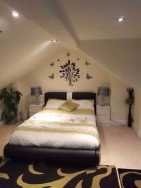 DOUBLE BEDROOM LOFT ROOM IN FAMILY HOUSE FOR RENT ++++