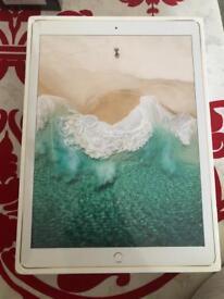 Apple iPad Pro 12.9-inch WI-FI Cellular