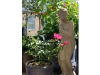 Beautiful Venus Garden ornament