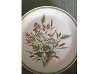 Set of 18 Harvestfield Plates, sideplates and bowls. Perfect condition.