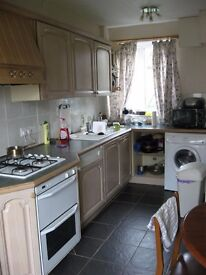 Large double room in Durham (DH1) 295 pcm available 1 June