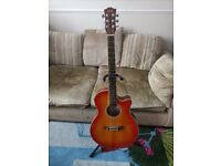 Beautiful Acoustic Electric Gremlin Guitar Excellent Condition