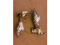 Recently purchased Unused Salsa/Latin/Ceroc Ladies Dance Shoes