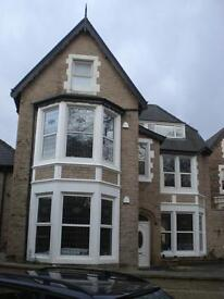 NEW EXECUTIVE SELF CONTAINED 1 BED FLAT TO LET IN NETHER EDGE