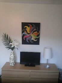 Hand painted by local artist, the paintings name is SOLL the size is 60cmx50cm acrilic on canvas £10