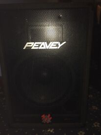 Peavey Eurosys 2 speakers