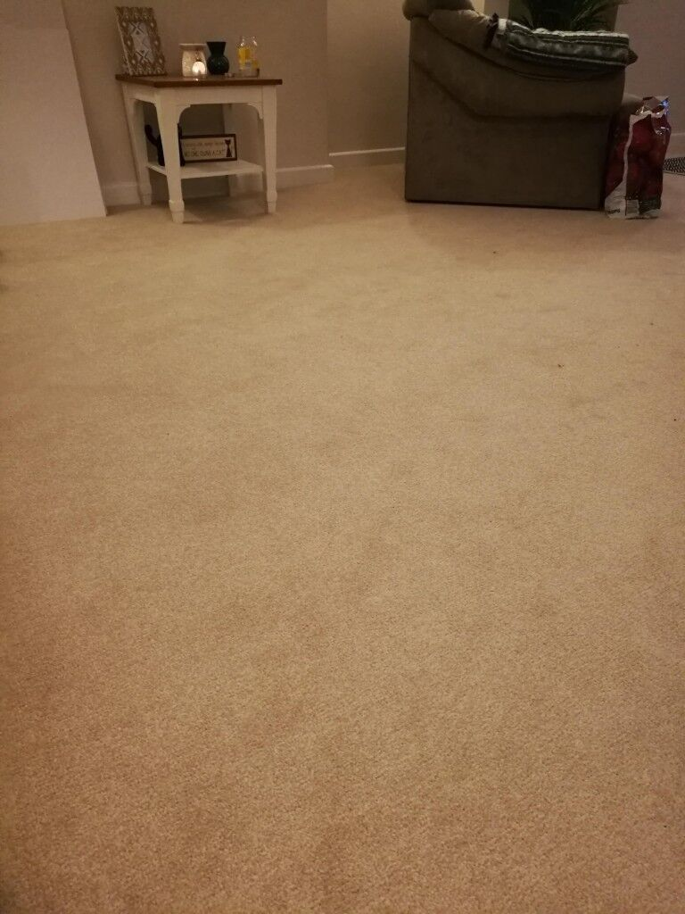 Enjoyable Beige Stain Free Carpet Only 2 Months Old Perfect Condition 4 1M X 2 8M In Chichester West Sussex Gumtree Interior Design Ideas Inamawefileorg
