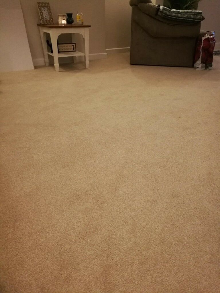 Strange Beige Stain Free Carpet Only 2 Months Old Perfect Condition 4 1M X 2 8M In Chichester West Sussex Gumtree Complete Home Design Collection Barbaintelli Responsecom
