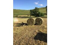 Hay and haylage round bales for sale