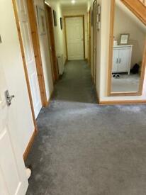 Hall Carpet / Underlay