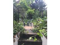 Studio basement flat with garden