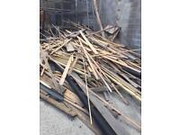 Loads of free wood