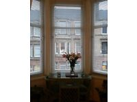 White wooden ikea blinds -Fit large tenenment bay windows