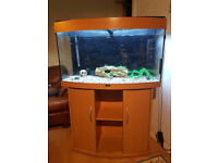 180 liter juwel bow fronted fish tank and stand for sale..full set up