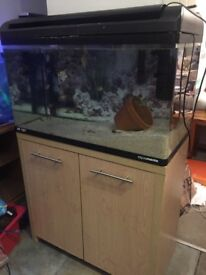 Fish tank,stand,hood,light,filter, heater,gravel,full set up free local delivery