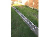Roofing ladder cat ladder zarges 100656