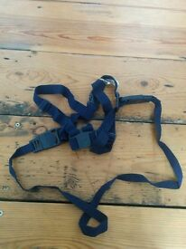 Boots harness and reins