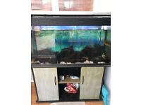 Jewel 300 fish tank and stand