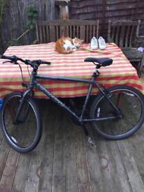Carrera subway bike
