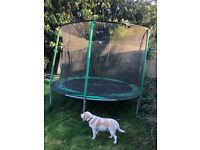 10' trampoline with safety net - FREE