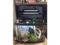 Good quality tropical fish tank with LOTS of accessories