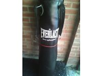 Large Everlast Punch Bag