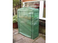 Plastic greenhouse SOLD