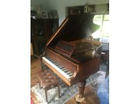 Baby Grand Piano, Kirkmann