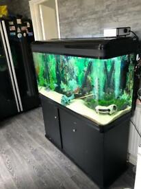 Boyu 300L fish tank