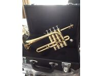 PICCOLO TRUMPET. BOUGHT BECAUSE I THOUGHT I WOULD BE ABLE TO PLAY IT..! I WAS SO WRONG..! BRAND NEW.