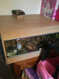 Viv exotic large 4ft viv with everything £220 ono