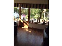 Used Oak engineered laminate flooring