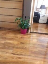 Laminaded wood for flooring.