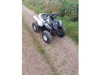 Aeon Cobra 100cc 2Stroke Quad Atv Motorbike.