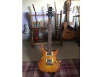 Custom Shop Gough Moonflower 2 guitar in Lemon burst