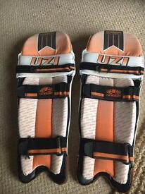 Junior cricket pads and gloves